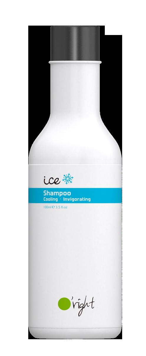O'RIGHT Шампунь мужской для волос Лед / Ice Shampoo 100 мл -  Шампуни
