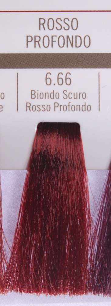 BAREX 6.66 краска для волос / PERMESSE 100мл