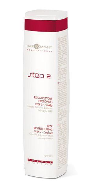 HAIR COMPANY Восстановление глубокое шаг 2 / Deep Restructuring Step 2 Cool Act TRIPLE ACTION 250млЭмульсии<br>Глубокое восстановление ШАГ 2 - Холодный. В состав продукта входят экстракт мяты - оказывает на волосы и кожу головы освежающее, тонизирующее и очищающее действие; Mirustyle MFP - активный комплекс для гладкости волос. Проникает в кортекс и восстанавливает кутикулу, придает волосам эластичность. Активные ингредиенты: экстракт мяты, Mirustyle MFP. Способ применения: после применения 1-го шага, нанести шаг 2, равномерно распределить по волосам и оставить на 5 минут. Смыть большим количеством воды.<br><br>Типы волос: Поврежденные<br>Назначение: Секущиеся кончики