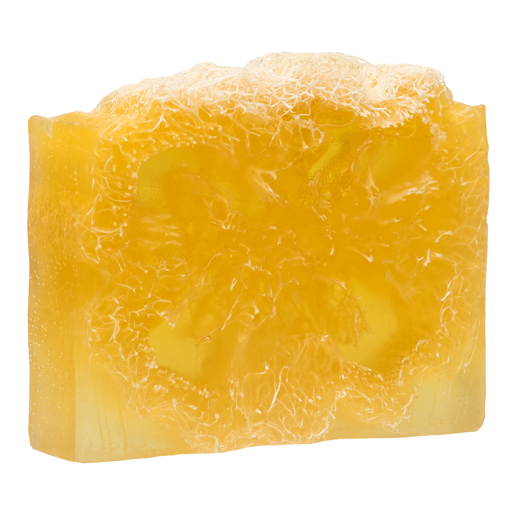 GLORIA Мыло с люфой Апельсин в шоколаде Антицеллюлитный комплекс / GLORIA HOME SPA 100 гр