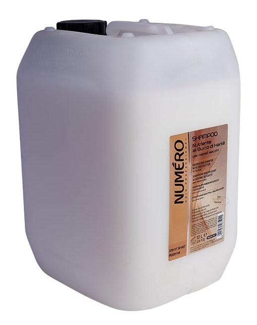 BRELIL PROFESSIONAL Шампунь с маслом карите для сухих волос / Numero 10 л фото