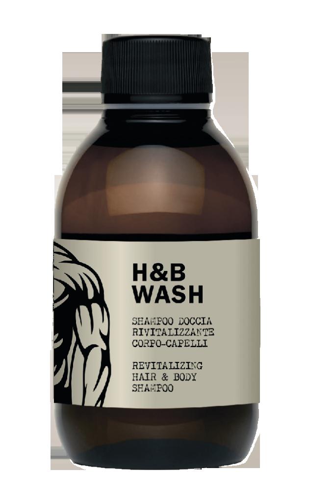 DEAR BEARD Шампунь для волос и тела / H&B WASH 250мл недорого