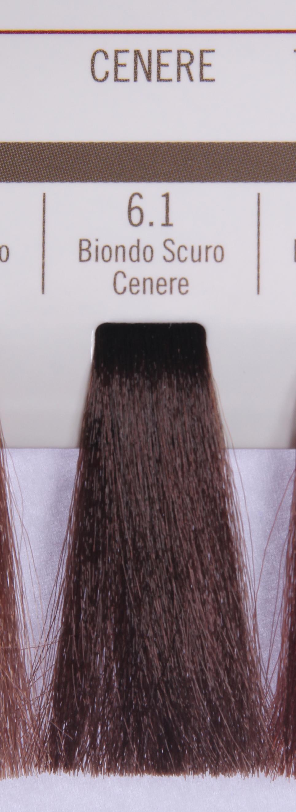 BAREX 6.1 краска для волос / PERMESSE 100мл