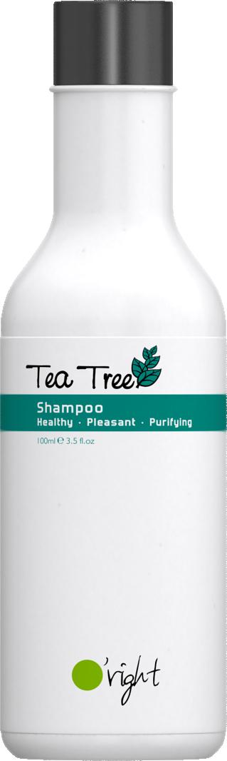 O'RIGHT Шампунь против перхоти и зуда кожи головы Чайное дерево / Tea Tree Shampoo 100 мл -  Шампуни