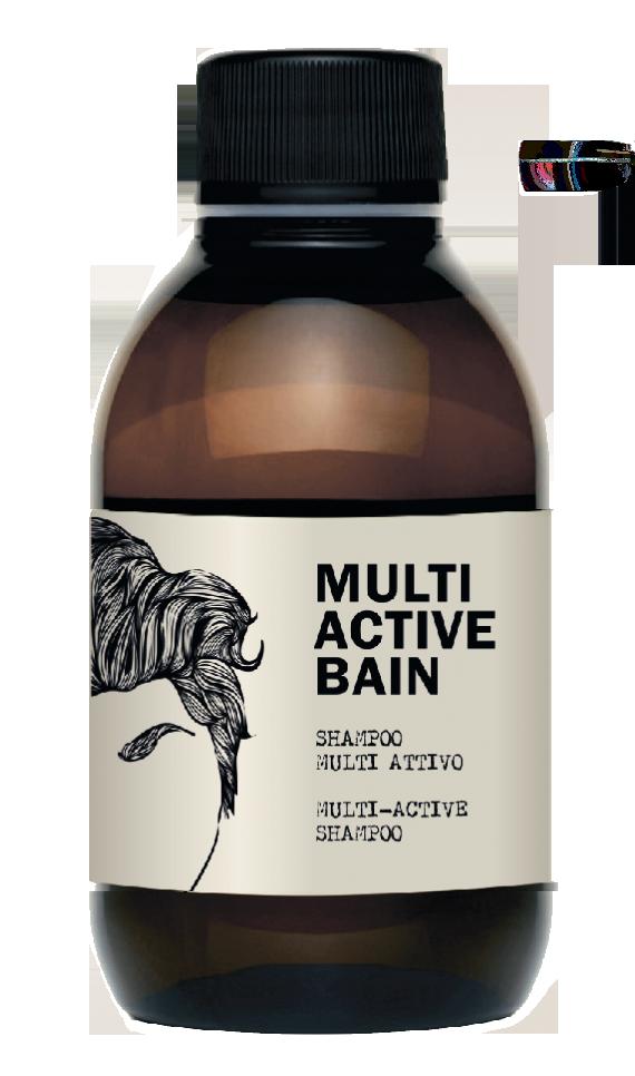 DEAR BEARD Шампунь мультиактивный / MULTI ACTIVE BAIN 250 мл dear beard щетка из древесины венге для усов и бороды 8 4 см