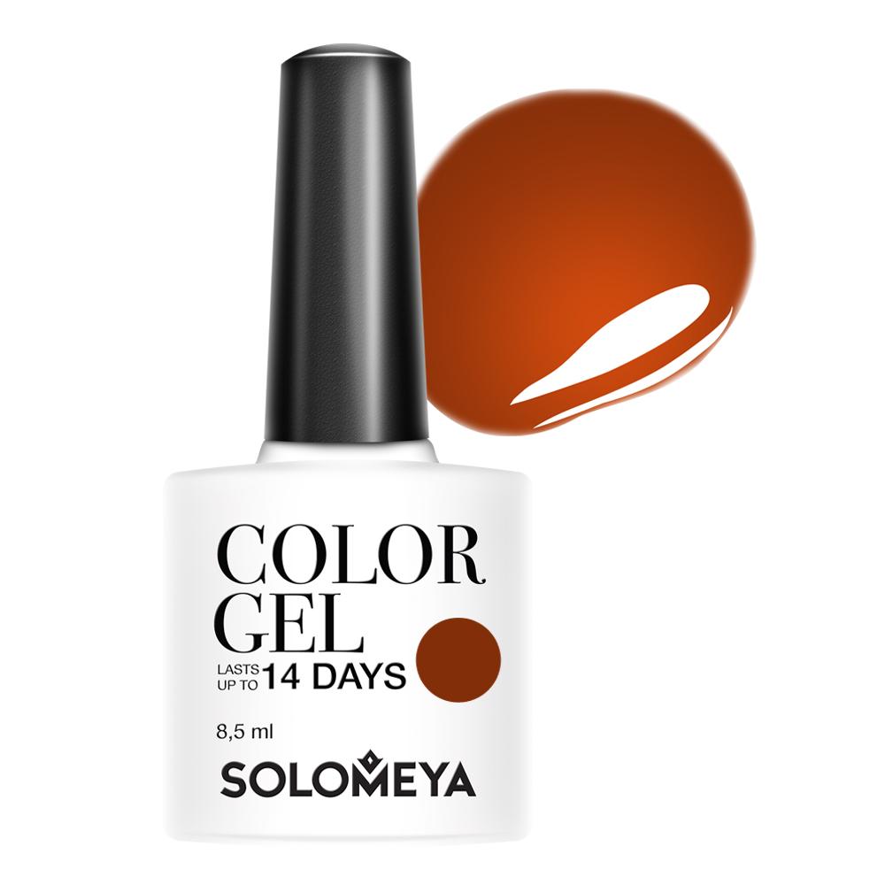SOLOMEYA Гель-лак для ногтей 117 Пряная корица / Color Gel Spicy cinnamon 8,5 мл гель лак для ногтей solomeya color gel beret scg034 берет 8 5 мл