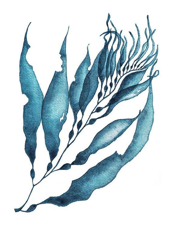 первому, тату водоросли в картинках приемным отцом марины