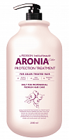 EVAS Маска для волос Арония / Pedison Institute-beaut Aronia Color Protection Treatment 2000 мл, фото 1